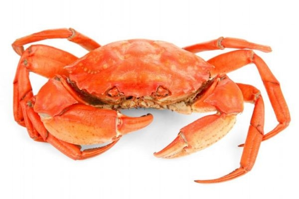 吃螃蟹为什么要喝黄酒 雄黄酒和黄酒一样吗