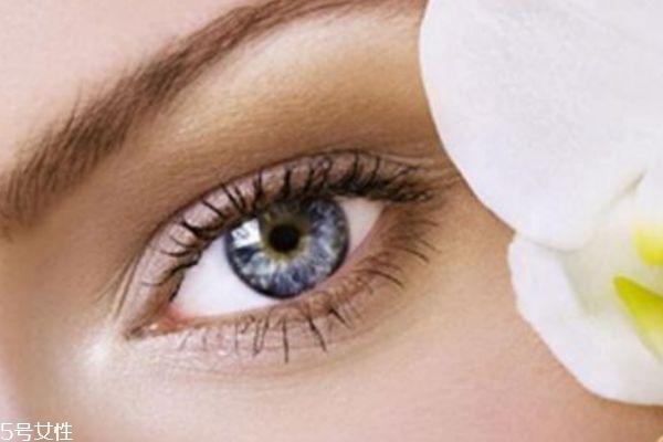 眼霜应该从什么时候就开始使用呢 眼霜有什么作用呢