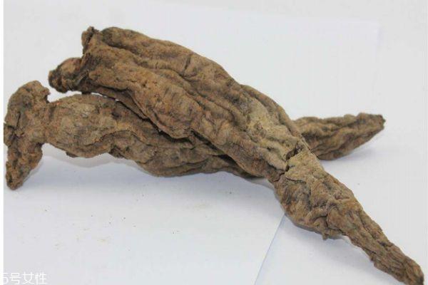 玄参有什么作用呢 玄参生长在什么环境里呢