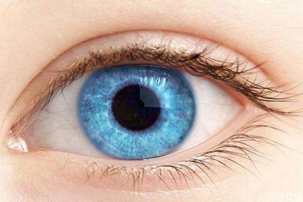 保护眼睛的办法有什么呢 如何保护眼睛呢