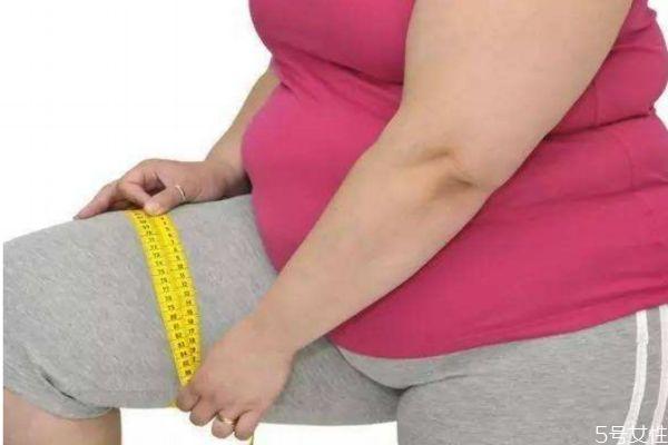 什么是虚胖呢 虚胖有什么危害吗