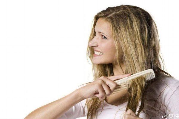 多梳头发有什么好处 梳头发的好处