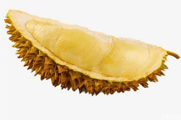 榴莲吃多了是不是会变胖呢 榴莲的热量高吗