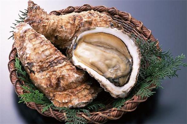 海蛎子蒸了不张嘴是什么原因 海蛎子用什么锅蒸好