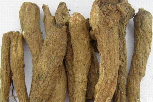 木香有什么作用呢 吃木香有什么好处呢