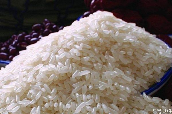 什么是籼米呢 籼米有什么营养价值呢