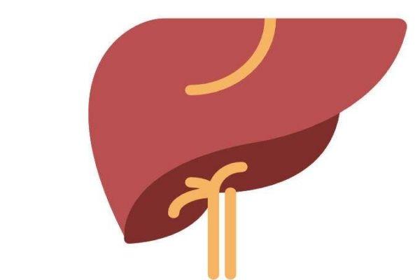 甲型肝炎应该怎么治疗呢 甲型肝炎的预防方法有什么呢