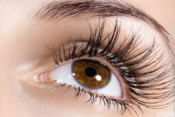 嫁接睫毛需要多久时间 嫁接睫毛多少钱能保持多久