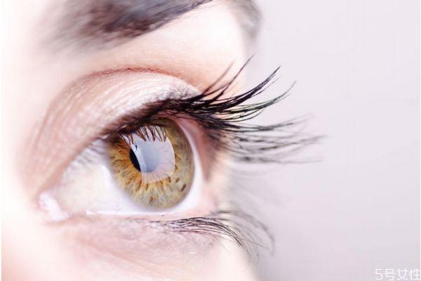 嫁接睫毛多少钱一次 睫毛接几厘米的最自然