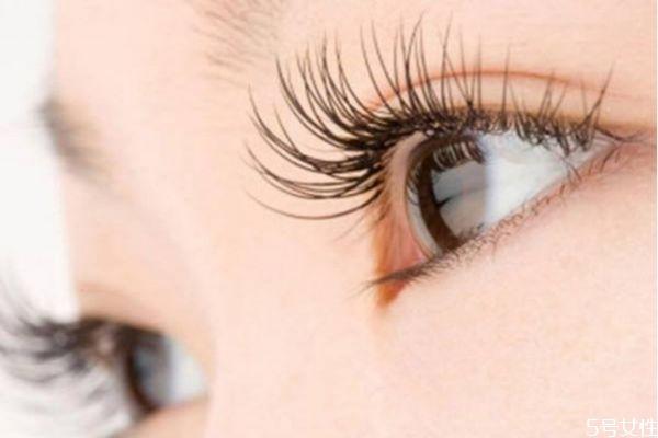 嫁接睫毛可以保持多长时间 嫁接睫毛有什么好处