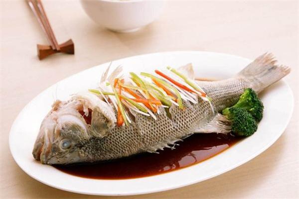 一斤的鲈鱼要蒸多久 一斤的鲈鱼有多少公分