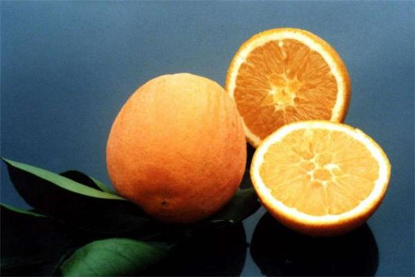 口腔溃疡能吃脐橙吗 口腔溃疡吃脐橙好不好