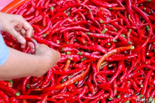 辣椒对皮肤有好处吗 长痘痘是因为辣椒吗