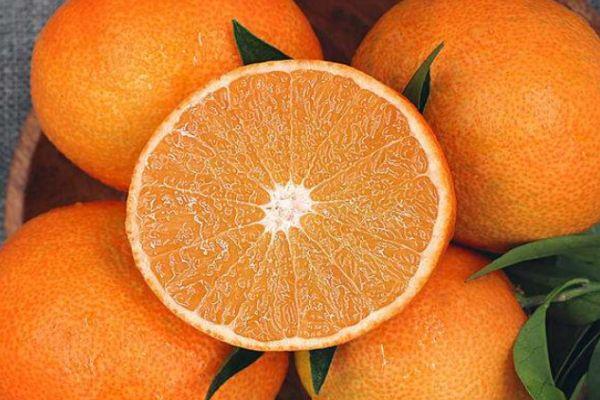 爱媛38号是橘子还是橙子 爱媛38号的营养价值