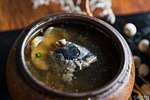 喝乌鸡汤有什么好处呢 乌鸡汤的做法有什么呢