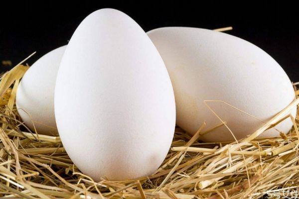 鹅蛋有什么营养价值呢 吃鹅蛋有什么好处呢