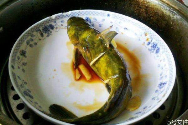 什么是黄刺鱼呢 黄刺鱼有什么营养价值呢