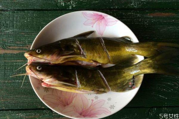 黄刺鱼适合什么人群吃呢 孕妇可以吃黄刺鱼吗
