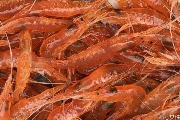 什么是脊尾白虾呢 脊尾白虾有什么营养价值呢