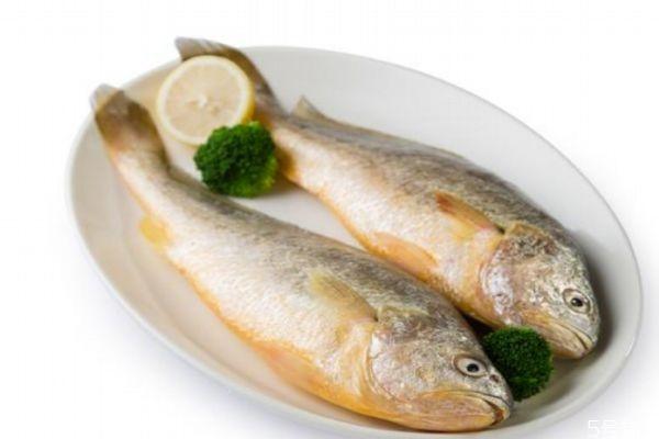 什么是黄花鱼呢 黄花鱼有什么营养价值呢