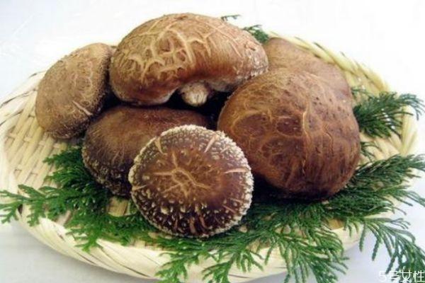 吃香菇有什么好处呢 香菇怎么做好吃呢