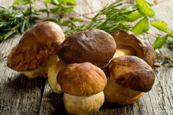 吃香菇有什么注意的吗 孕妇可以吃香菇吗