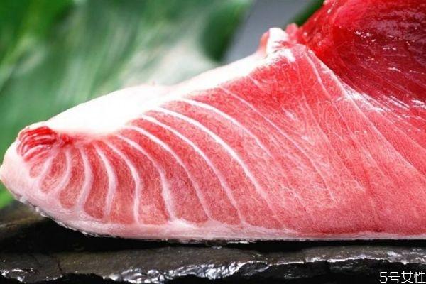 吃金枪鱼有什么注意的吗 孕妇可以吃金枪鱼吗