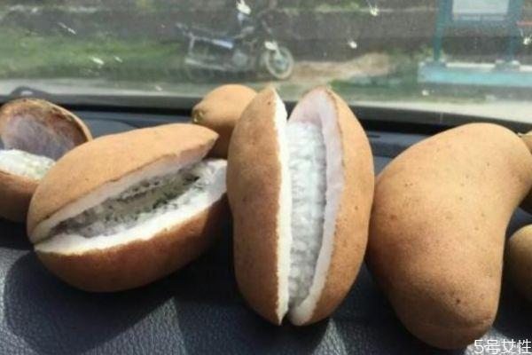 野香蕉可以吃吗 野香蕉有什么营养价值呢