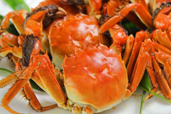 大闸蟹和毛蟹哪个好吃 大闸蟹和毛蟹的区别