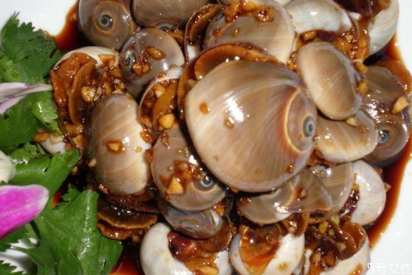 什么是香螺呢 香螺有什么营养价值呢