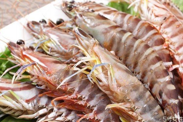 什么是竹节虾呢 竹节虾有什么营养价值呢