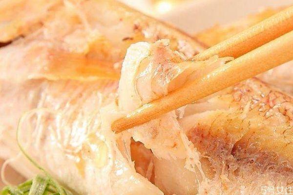金目鲷有什么营养价值呢 金目鲷怎么做好吃呢