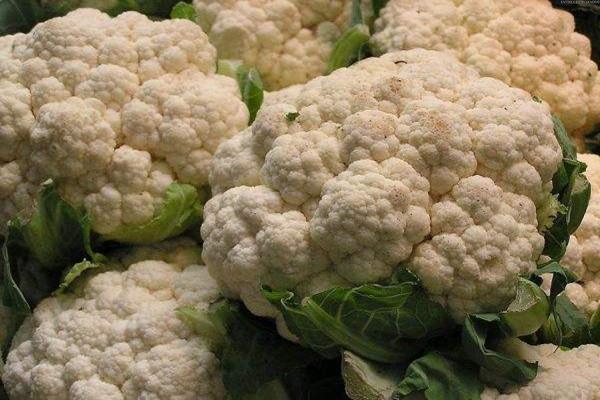 花菜怎么炒比较脆 发霉的花菜还能吃吗