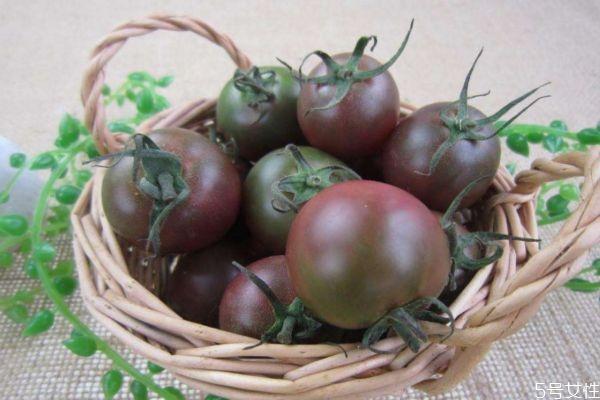 什么是黑番茄呢 黑番茄有什么营养价值呢