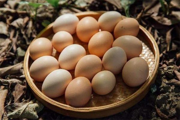 土鸡蛋一天吃几个合适 土鸡蛋可以生吃吗