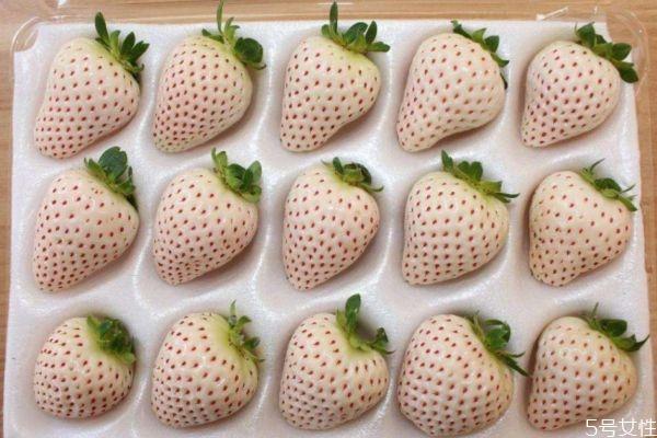 吃菠萝莓有什么好处呢 吃菠萝莓有什么注意的呢