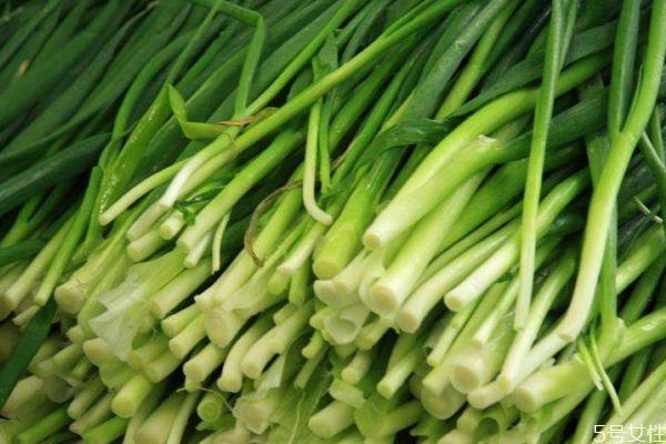韭菜是凉性还是热性 韭菜可以天天吃吗