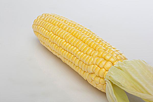 吃玉米的最佳时间 玉米粒可以煮面条吗