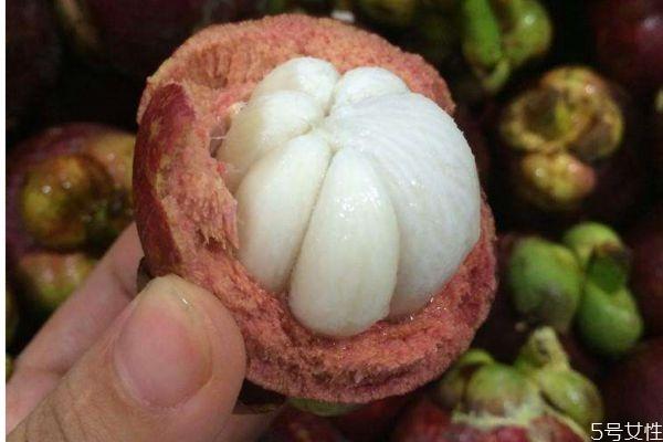 莽吉柿是哪种热带水果 什么是莽吉柿