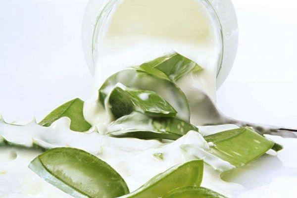 芦荟灌肤的功效和作用 芦荟灌肤的副作用