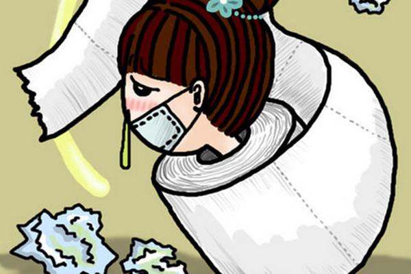 感冒可以喝菊花茶吗 感冒饮食要注意什么