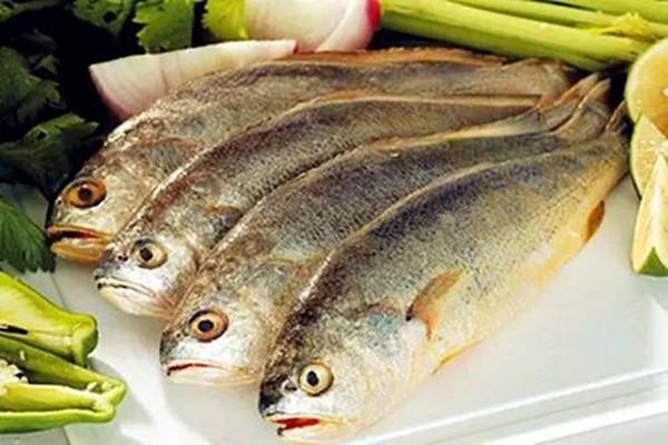 怎么挑选新鲜的黄鱼 黄鱼是黄花鱼吗