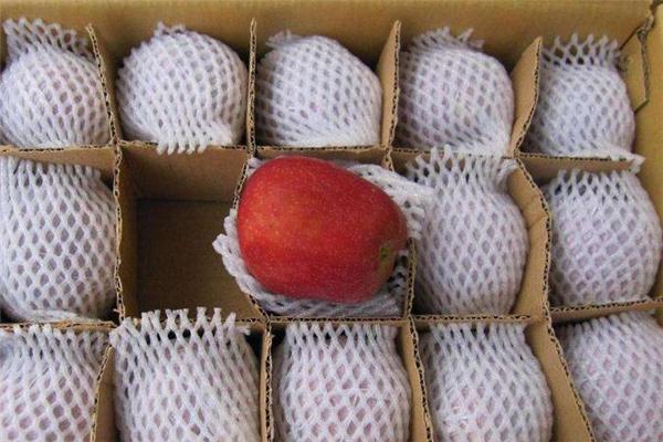 花牛苹果能放多久 花牛苹果可以放冰箱吗