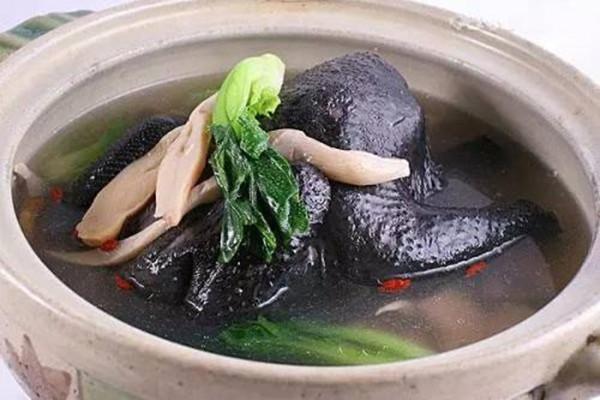 乌鸡和普通鸡有什么不同 乌鸡汤一个月适合喝几次