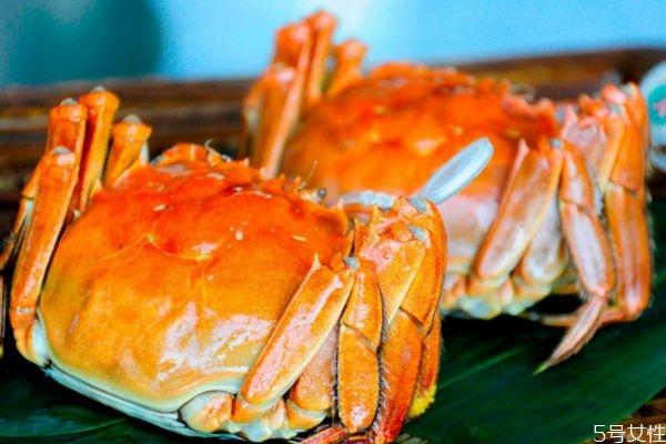 一般螃蟹多大 4两的螃蟹多大