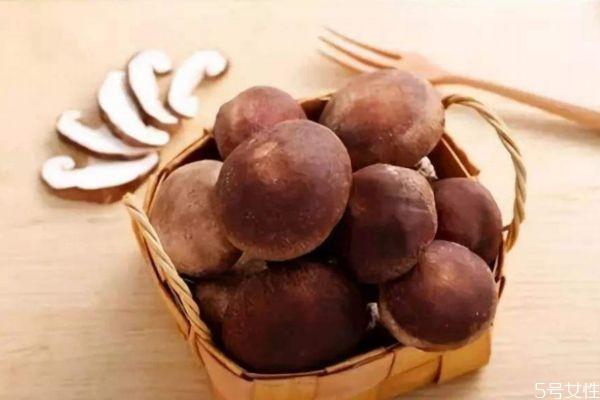 清洗之后的香菇能放几天 香菇可以怎么保存
