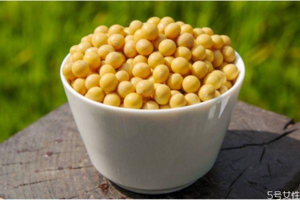 黄豆有什么营养价值 吃黄豆注意什么