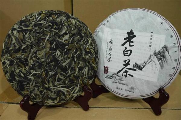 老白茶怎么保存 老白茶和新白茶的区别