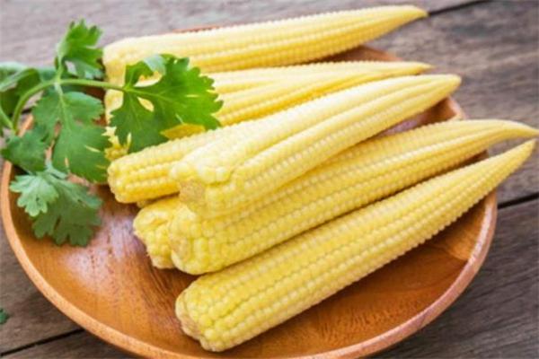 玉米笋是玉米吗 玉米笋是整个吃吗
