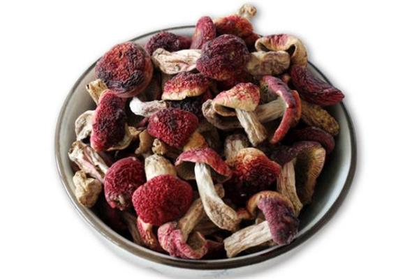 红蘑菇怎么做好吃 红蘑菇能治肺癌吗